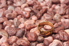 Golden wedding ring on the red stones Royalty Free Stock Image