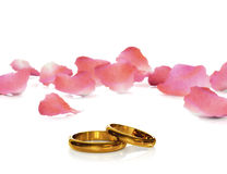Golden wedding rings Royalty Free Stock Photo