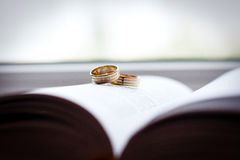 Golden wedding rings Stock Image
