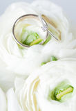 Golden wedding rings  in flower Royalty Free Stock Image