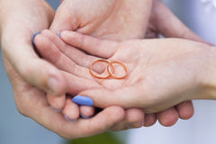 Golden wedding rings in hands of bride and groom Royalty Free Stock Image