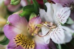 Golden wedding rings lie on fresh flowers stock image