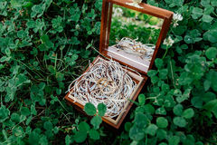 Golden wedding rings lie on the ropes in a wooden box. With a mirror, which stands on the grass Royalty Free Stock Photos