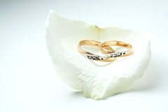 Golden wedding rings Royalty Free Stock Photography