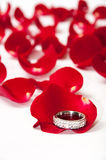 Golden wedding rings on the petals of red rose Stock Photos