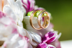 Golden wedding rings on the spring white and purple flowers Royalty Free Stock Photography