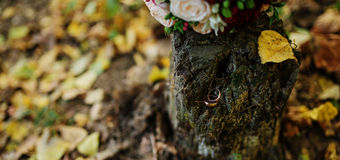 Golden wedding rings at stump on autumn forest with bouquet. Royalty Free Stock Photo