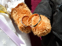 Golden wedding rings in toy bears paws Royalty Free Stock Photos