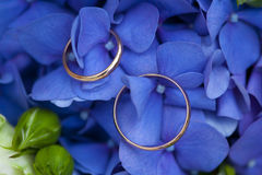 Golden wedding rings with on wedding bouquet of white and blue flowers Royalty Free Stock Images