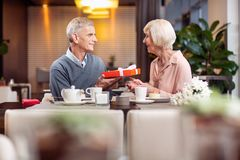 Loving mature couple celebrating love. Golden wedding. Sincere glad mature men presenting gift while posing in profile and having desert Royalty Free Stock Photography