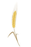 Golden wheat ear simple vector illustration Stock Photography