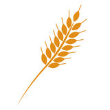 Golden wheat ear simple vector illustration Stock Image