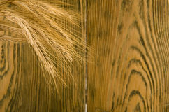 Golden wheat ears Royalty Free Stock Images