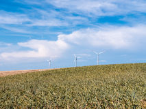 Golden Wheat field with wind turbines against blue sky Stock Image