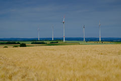 Golden wheat field and wind turbines Stock Photography