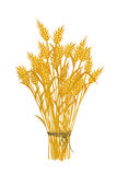 Golden wheat icon. Wheat icon, isolated and grouped objects on white Stock Photos