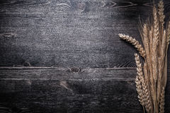 Golden wheat and rye ears on wooden board Royalty Free Stock Image