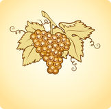 Golden wine background with grape and leaf Stock Photography