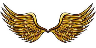 Golden wings. Royalty Free Stock Photo