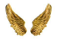 Golden wings Royalty Free Stock Image