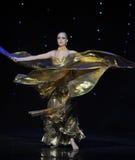 Golden wings-Turkey belly dance-the Austria's world Dance Stock Photos