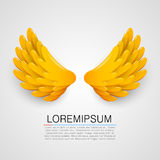Golden wings on white background. Royalty Free Stock Photography
