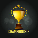 Golden winning cup for Cricket. Stock Image