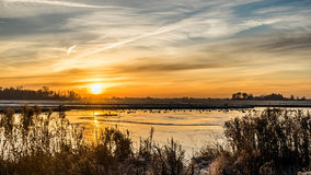 Free Golden Winter Sun On Snowy Paddock Frozen Pond And Trees Royalty Free Stock Images - 84935009