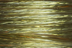 Golden wire coil Royalty Free Stock Images