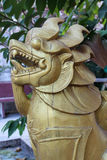 Golden wood singha Stock Images