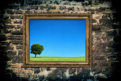 Golden wooden frame with beautiful landscape Stock Photo
