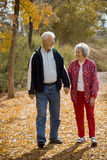 Golden Years. An older retired couple take a walk together on a autumn day as they enjoy their golden years together Stock Image