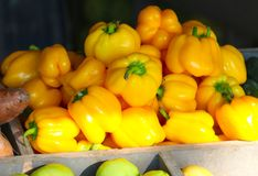 Golden Yellow Bell Peppers Royalty Free Stock Photos