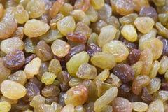 Golden yellow and brown raisins Stock Photos