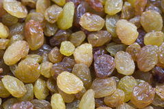 Golden yellow and brown raisins close up Stock Image