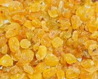 Golden Yellow Raisins. Macro shot of golden raisins Stock Photos