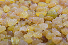 Golden yellow raisins Royalty Free Stock Photos