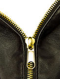 Golden zipper Stock Photography