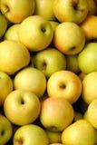 Goldene Äpfel Stockbild