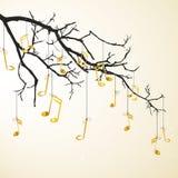 Goldene Anmerkungen, die an einem Zweig hängen Lizenzfreie Stockfotos