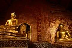 Goldene Auslegung Stockbilder