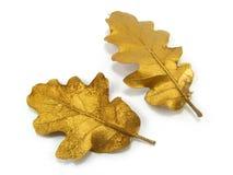 Goldene Blätter Stockbilder