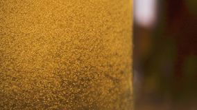 Goldene Blasen der Zeitlupe steigen oben in die Getränknahaufnahme stock footage