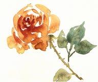 Goldene Blume des empfindlichen Watercolour stockbilder