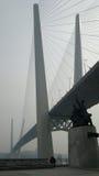 Goldene Brücke, Wladiwostok, Russland Stockbilder
