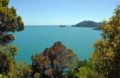 Goldene Bucht angesehen vom Liger-Bucht-Ausblick Neuseeland Stockbilder