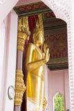 Goldene Buddha-Statue am Eingang Stockbilder