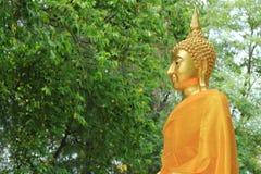 Goldene Buddha-Statue im tropischen Garten Lizenzfreie Stockfotos