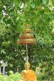 Goldene Buddha-Statue im tropischen Garten Stockbilder