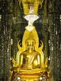 Goldene Buddha-Statue am Kathedralenglas Stockfotos